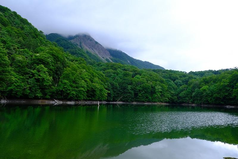 鶏頭場の池の風景写真