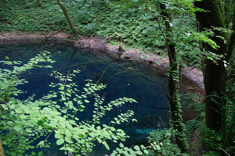 X-T3で撮影した青池の風景写真