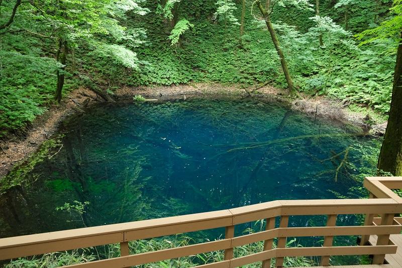 青池の風景写真