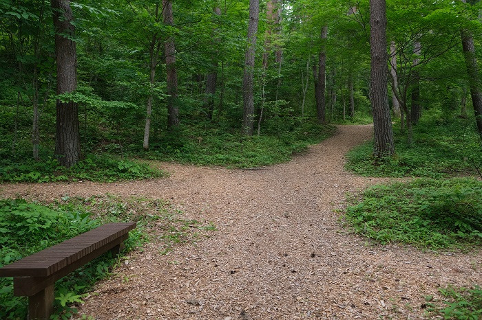 知勝院の樹木葬の入り口の風景写真