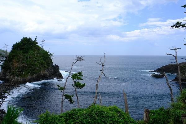 龍舞崎(たつまいざき)観光の景色の展望写真