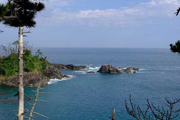 龍舞崎(たつまいざき)観光の景色の写真