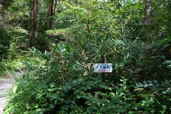 十八鳴浜への遊歩道の風景写真